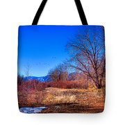 Winter In South Platte Park Tote Bag