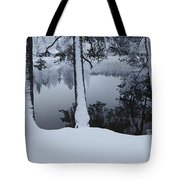 Winter In The Countryside  Bold Tree Tote Bag