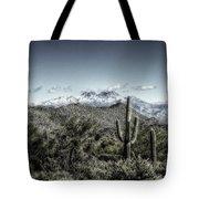 Winter In The Desert Tote Bag