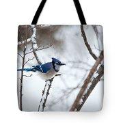 Winter Jay Tote Bag