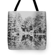 Winter Lake Tote Bag