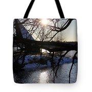 Winter Lake Tote Bag