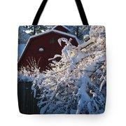Winter Look Tote Bag
