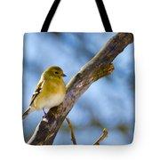 Winter Morning Song Bird Tote Bag