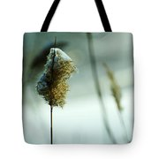 Winter Music Tote Bag