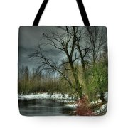 Winter On The Nicomen Slough Tote Bag