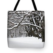 Winter Park With Snow Covered Trees Tote Bag by Elena Elisseeva