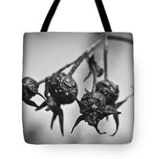 Winter Rose Tote Bag