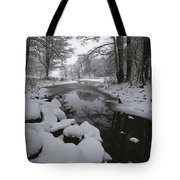 Winter Scene Of Creek With Snow-covered Tote Bag