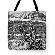 Winter Sets In Tote Bag