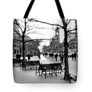 Winter Setting Sun Tote Bag