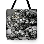Winter Solstice Tote Bag