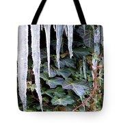 Winter Still Tote Bag
