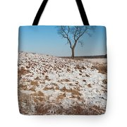 Winter Tree Nachusa Grasslands Tote Bag