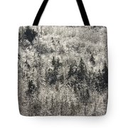 Winter Trees Covered In Ice Tote Bag