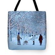 Winter Twilight Walk Tote Bag
