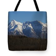 Winter View Tote Bag