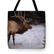 Winter Wapiti Tote Bag