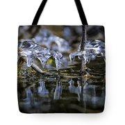 Winter Water Tote Bag