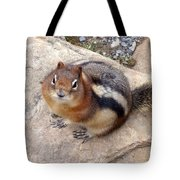 Winter Weight Tote Bag