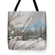Winter Woods Tote Bag by Joann Vitali