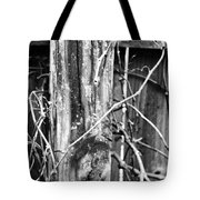 Wintered And Weathered Tote Bag