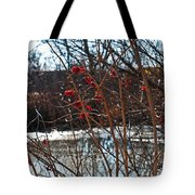 Winters Food Store Tote Bag