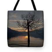 Wintertree In The Evening Tote Bag