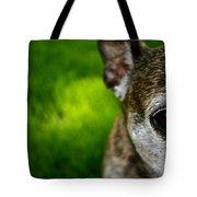 Wise Eye Tote Bag