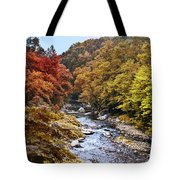 Wissahickon Creek In Fall Tote Bag