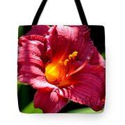 With The Finger Of God Tote Bag