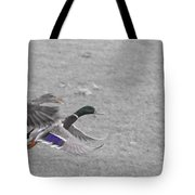 With The Finishing Line In Sight  Tote Bag