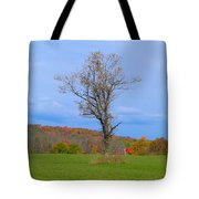 Without A Forest Tote Bag