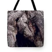 Wolf And The Eagle Tote Bag