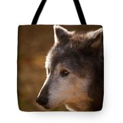 Wolf Outlined By The Sun Tote Bag