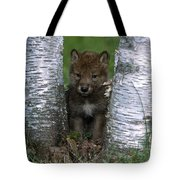 Wolf Pup Playing Peekaboo Tote Bag