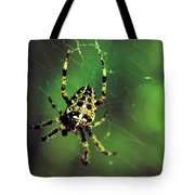 Wolf Spider  Tote Bag