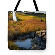 Woman By Boat On Grassy Shore Tote Bag