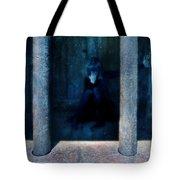 Woman In Jail Tote Bag by Jill Battaglia