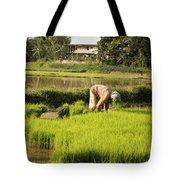 Woman Planting Rice Tote Bag