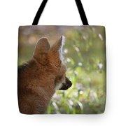 Wondering Wolf Tote Bag