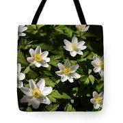 Wood Anemone Tote Bag