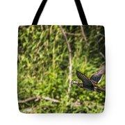 Wood Duck In Flight Tote Bag