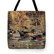 Wood Duck Trio Tote Bag