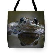 Wood Frog  Rana Sylvatica Tote Bag
