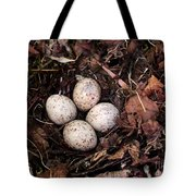 Woodcock Nest And Eggs Tote Bag