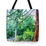 Woodland And Huge Tree Illustration Tote Bag