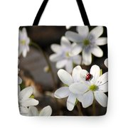 Woodland Flora And Friend Tote Bag