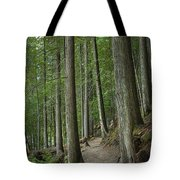 Woodland Forest Path Tote Bag
