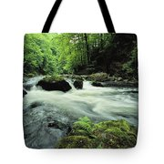 Woodland Stream And Rapids, Time Tote Bag